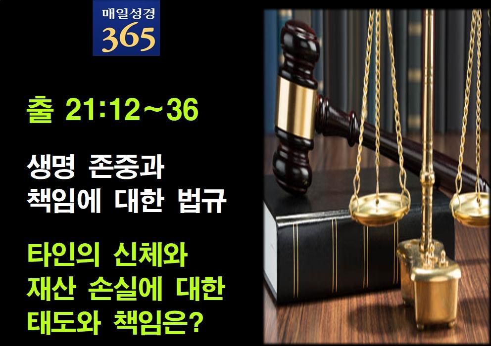 2021년 9월27일 월요일[해설] 출21-12-36 생명 존중과 책임에 대한 법규002.jpg