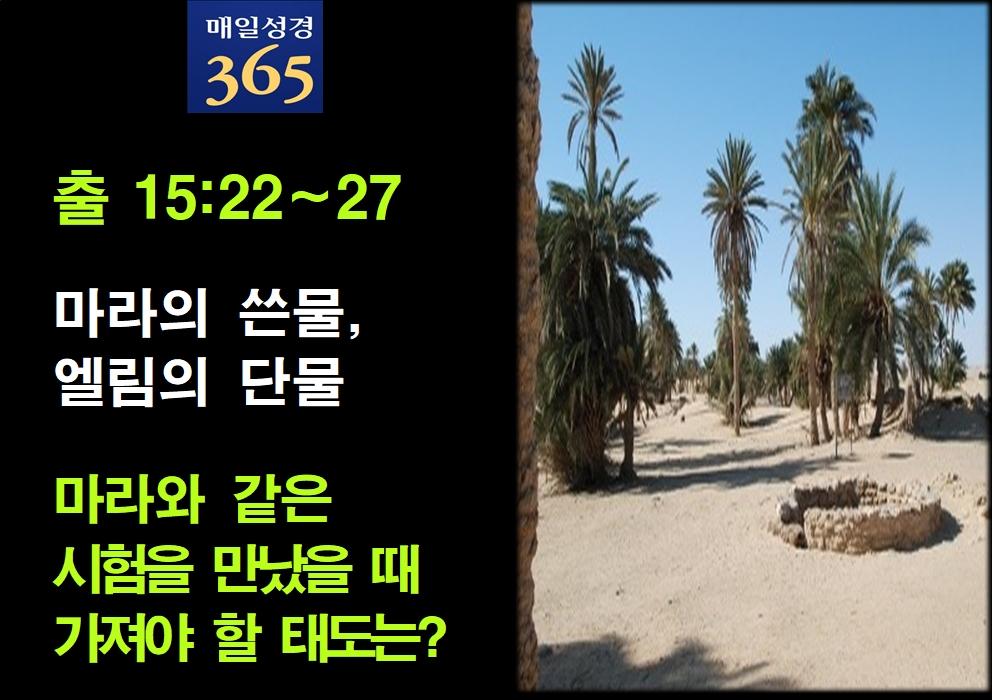 2021년 9월16일 목요일[해설] 출15-22-27 마라의 쓴물, 엘림의 단물002.jpg